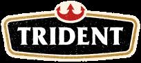 Trident Foods Logo